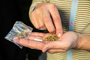 DOUTRINA – PORTE DE DROGAS PARA USO PESSOAL – PRINCÍPIO DA INSIGNIFICÂNCIA.